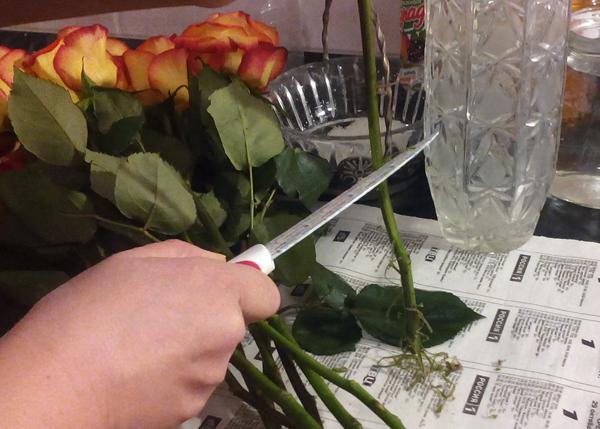 Подготовка стеблей цветов для хранения в вазе